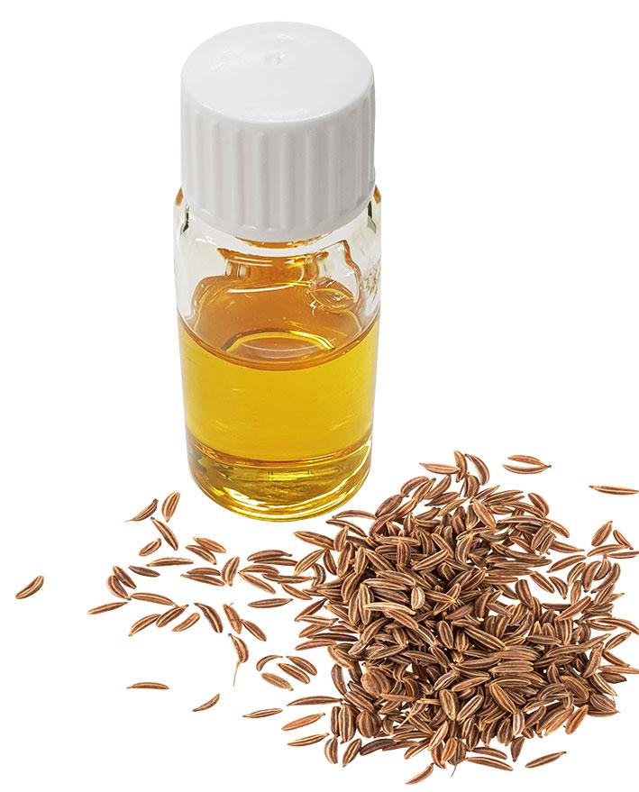 Bio Cumin CO2 Extract Organic kaufen