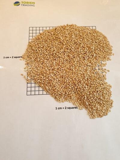 Sesame Seeds Nature 99.95% - Tobien Trading